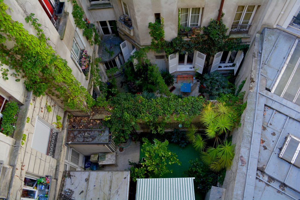 Une cour végétale dans un immeuble