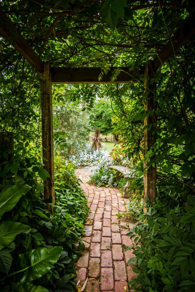 allée en pavé dans un jardin